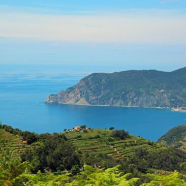 Das Naturschutzgebiet Cinque Terre