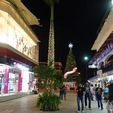 Weihnachtsbäume Anfang Januar - normal. Auch bei 26 Grad