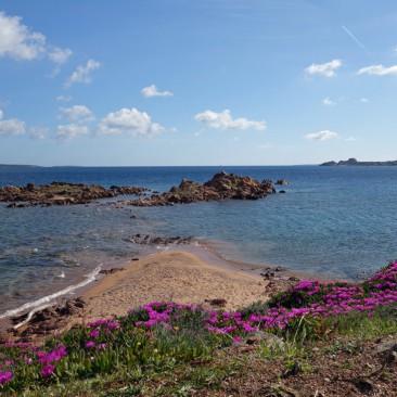 Campingplatz mit Aussicht: Isuledda auf Sardinien