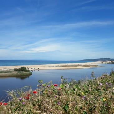 Strand bei Valledoria, breit, fein, schön
