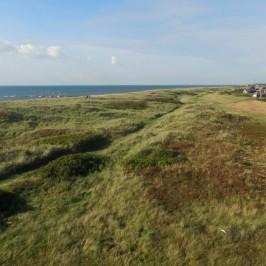 Hvidbjerg Strand Camping – Mehr geht nicht