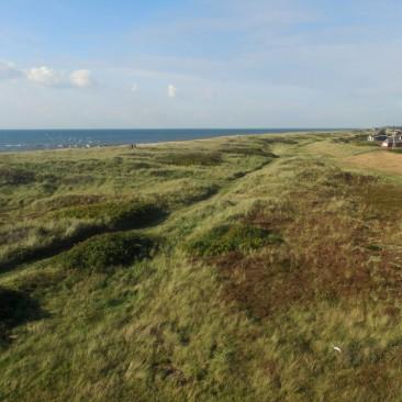 Die Dünenlandschaft von Hvidbjerg Strand