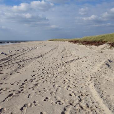 Feiner breiter Sandstrand