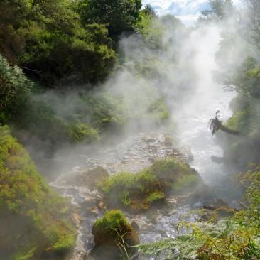 Quellwasser bei den Waikite Valley Thermal Pools