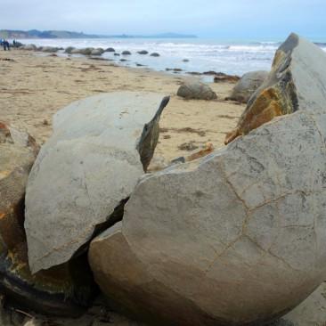 Nicht weit entfernt: DIe Moeraki Boulders