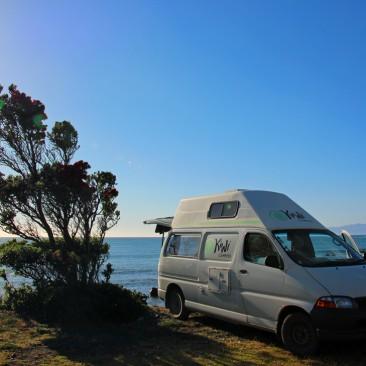 Stellplatz Cape Palliser Neuseeland